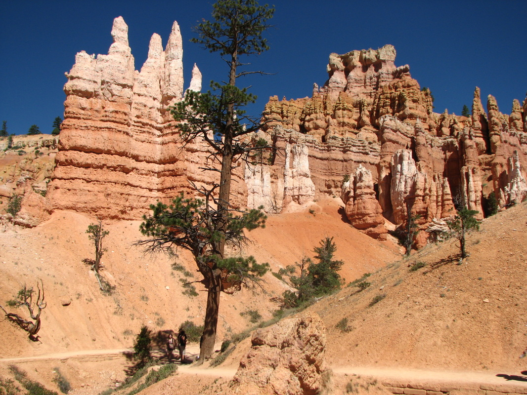 Bryce Canyon, one of my favorite National Parks.