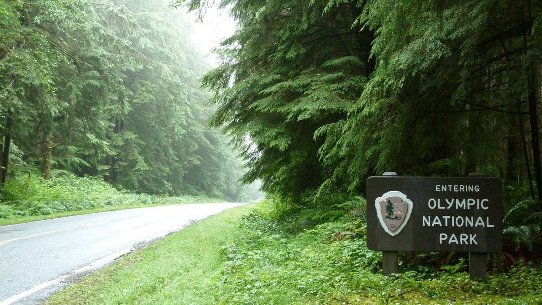 Entering Olympic National Park.