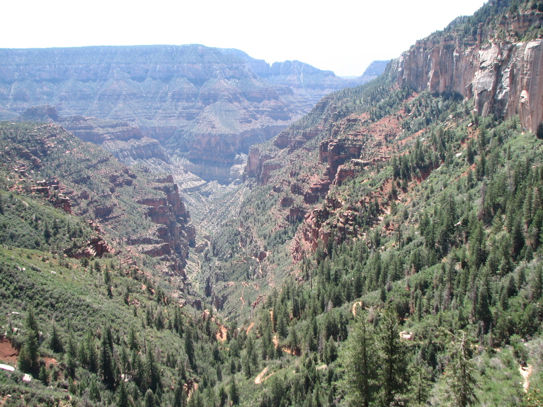 View from North Kaibab Trail at the Grand Canyon.