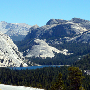 Get Up & Go - 6 Road Trip Ideas | Tuolumne Meadows Drive Yosemite