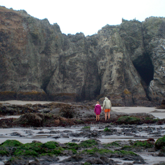 Get Up & Go - 6 Road Trip Ideas | Exploring tide pools at low tide in Bandon, Oregon