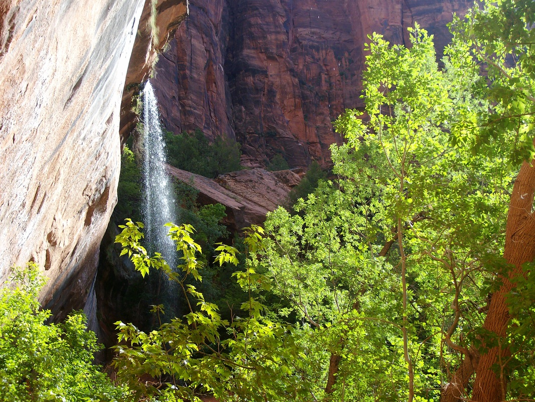 Emerald Pools Trail in Zion offers some waterfall views.