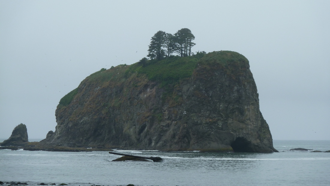 View from the beach in rugged La Push, on the Olmypic Peninsula
