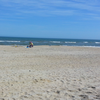 The Beach At Chincoteague Island Virginia In Spring A Great Time To Visit