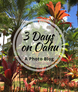 Wondering what to do on Oahu in 3 days? Get inspired with some of our favorite photos from this beautiful island.