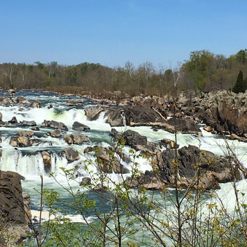 Love the view at Great Falls Park after a rain! It's one of 4 of our favorite National Park units in the DC area.