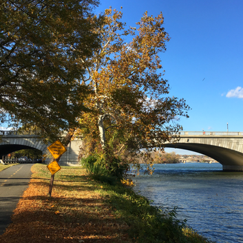5 ways to celebrate fall in the Mid-Atlantic region. My favorite is to view colorful leaves while ride biking along one of several trails in the DC metro area.