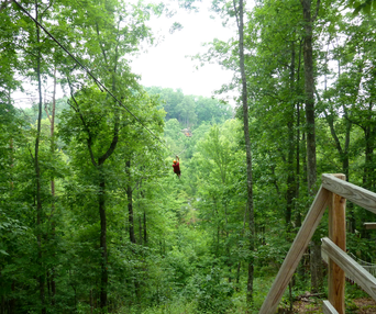 8 Cool Things for Teens in Pigeon Forge - zip lining through the trees!