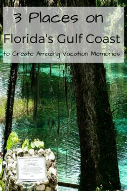 Visit Orlando, Siesta Key and Crystal River on this amazing road trip in Florida!