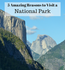 5 Amazing Reasons to Visit a National Park