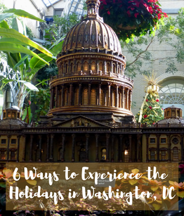 From unique holiday exhibits to outdoor ice skating, here's 6 ways to experience Washington DC for both locals and visitors to enjoy.