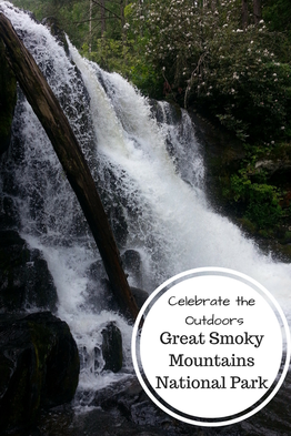 Activities & resources for visiting Great Smoky Mountains National Park.