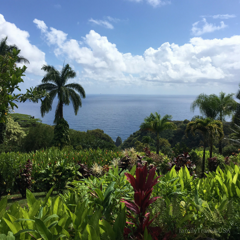 The Road to Hana is a must do in Maui. Check out these tips and some of our favorite spots.